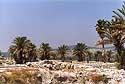 Westward view from Tel Megiddo's Area M